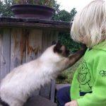 We love kitty, the feeling isn't usually returned.